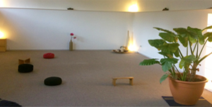 Mindfulness leren mediteren